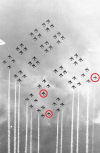 Polish Airforce.png