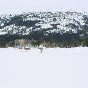 Ahkio on kätevä väline myös Norjassa