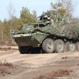 Yhdysvaltain Euroopan maavoimajoukkojen osaston Stryker