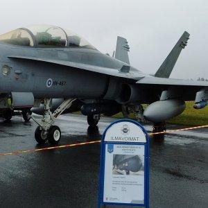 Hornet ilmasta-maahan aseistuksessa
